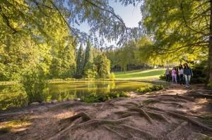 il laghetto del Parco Sigurtà (1)