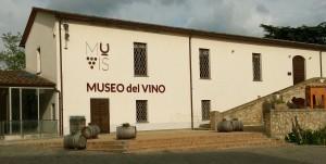 Castiglione Teverina museo del vino (1)